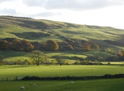 autumn-colours-assel-stinchar-valley-013