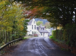 autumn-leaves-daljarrock-bridge-pinwherry-031