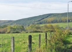 pinwherry-pinmore-views-069